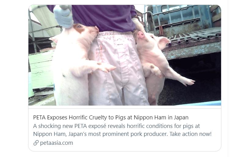 【動画】『肉を食うとは、こういう事』【PETA 日本ハム】真夜中の独り言 #89